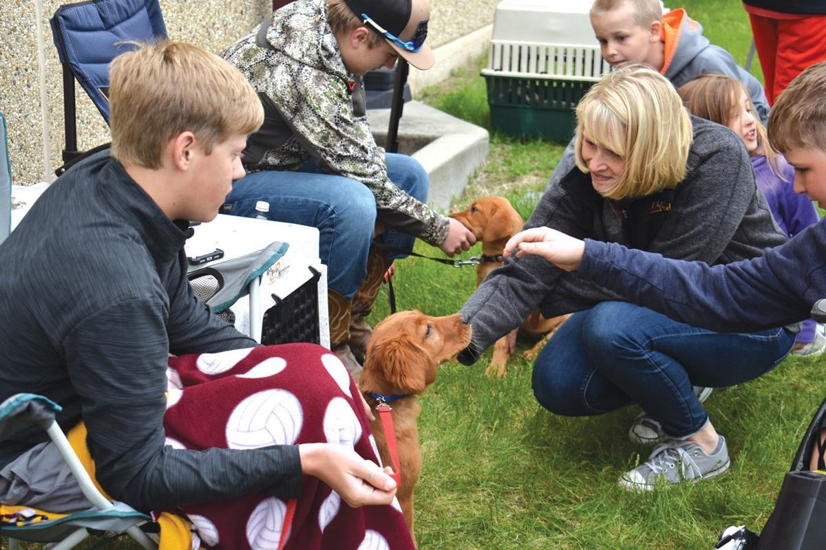 Medford Baby Animal Day 2