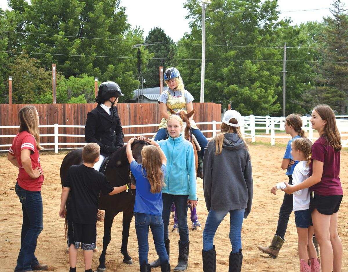 Horses again an attraction, especially for youth, at the
