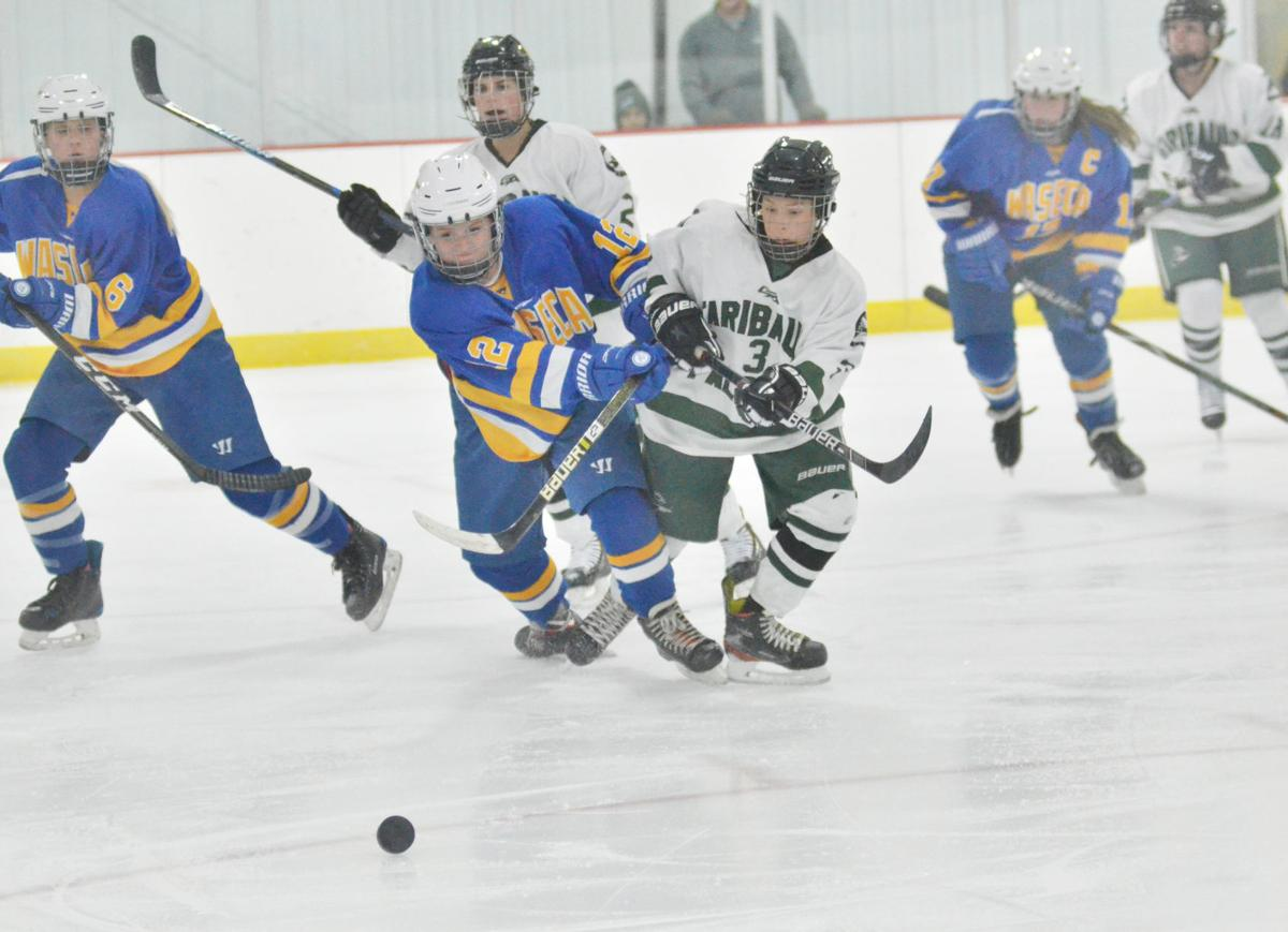 In early part of season, achieving team goals as important as scoring them for Faribault, Waseca girls hockey