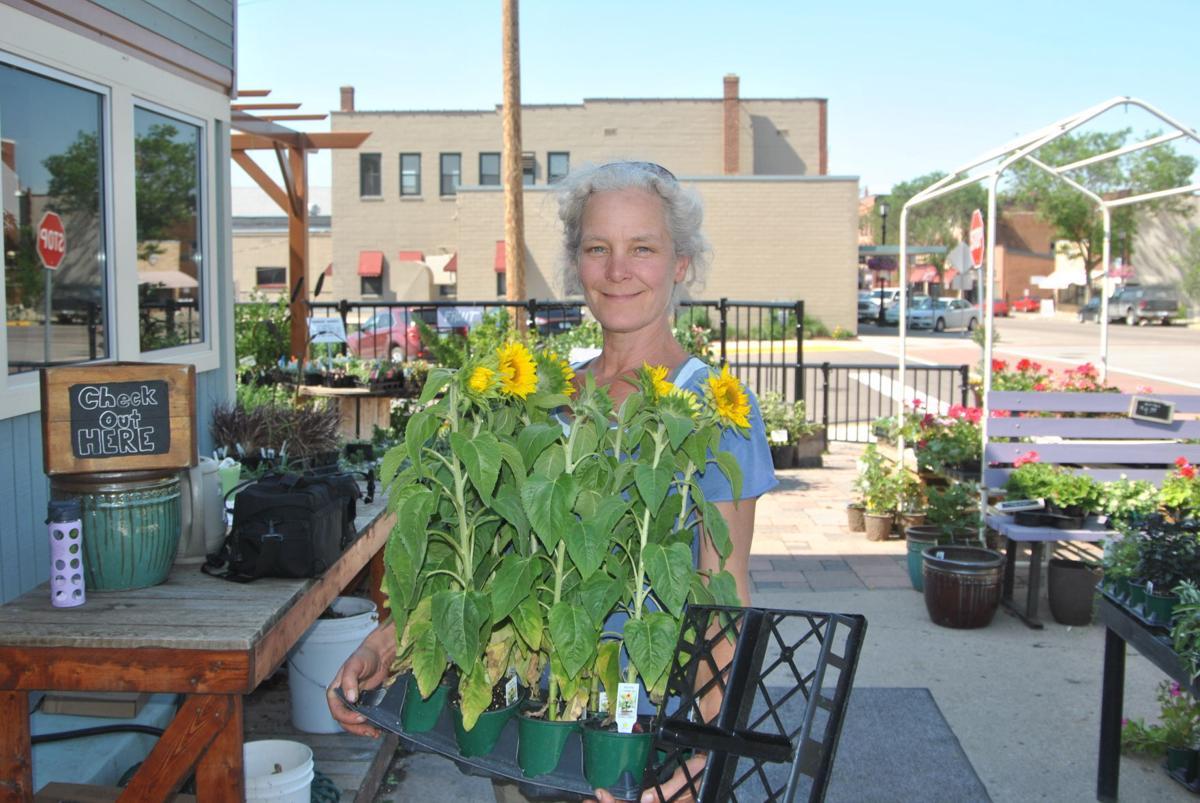 Eco Gardens Looks To Lead Northfield Community Toward Organic