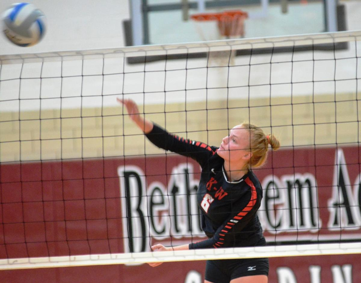 2019 FDN area volleyball player of the year: Ally Peterson