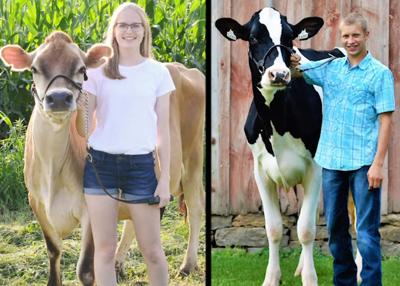 mn 4-h dairy showcase