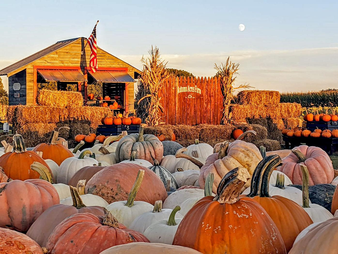 Autumn Acres Farm