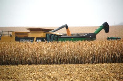 Harvest stalled
