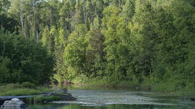 Bigfork River