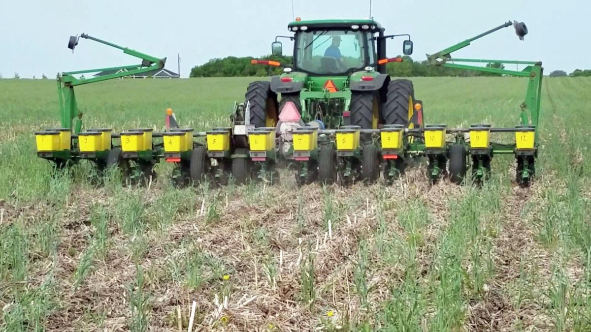 'Improving water quality' a top reason for farmers planting cover crops