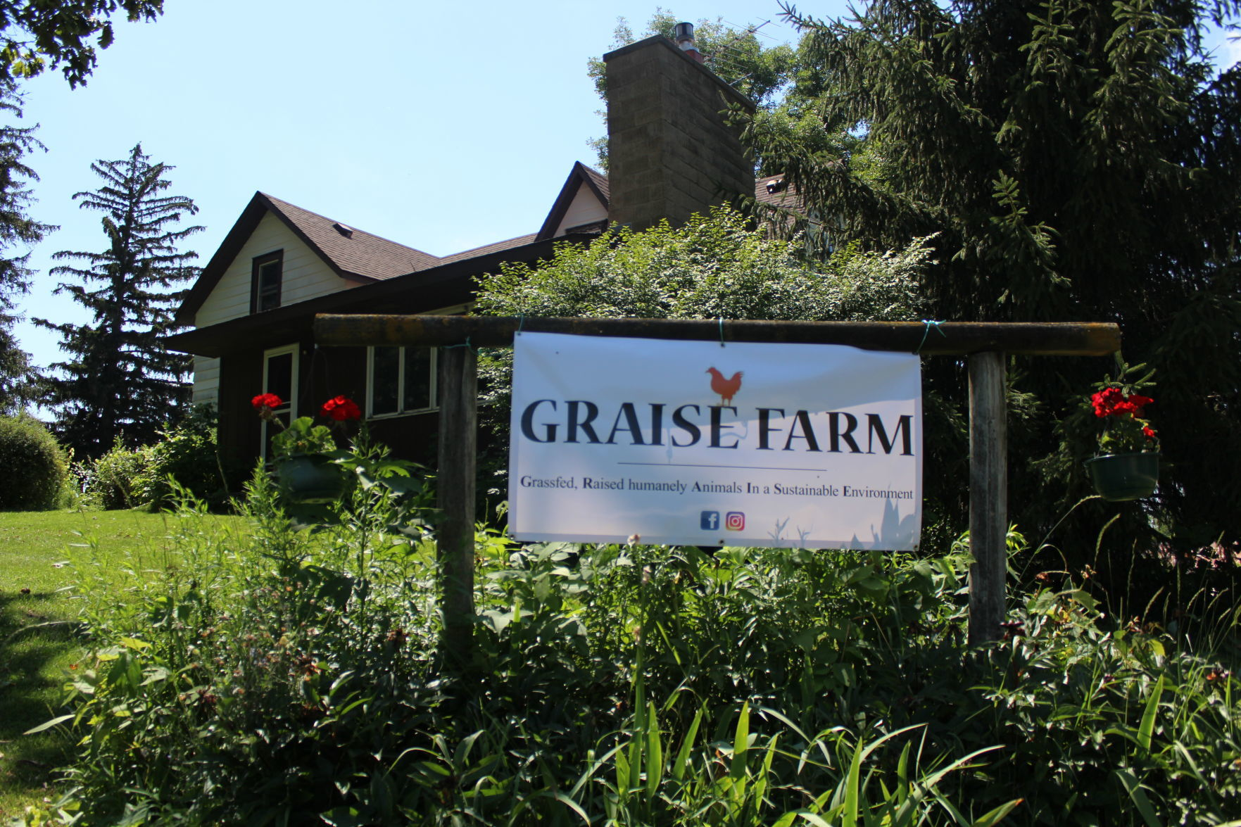 Graise Farm during the Eat Local Co op