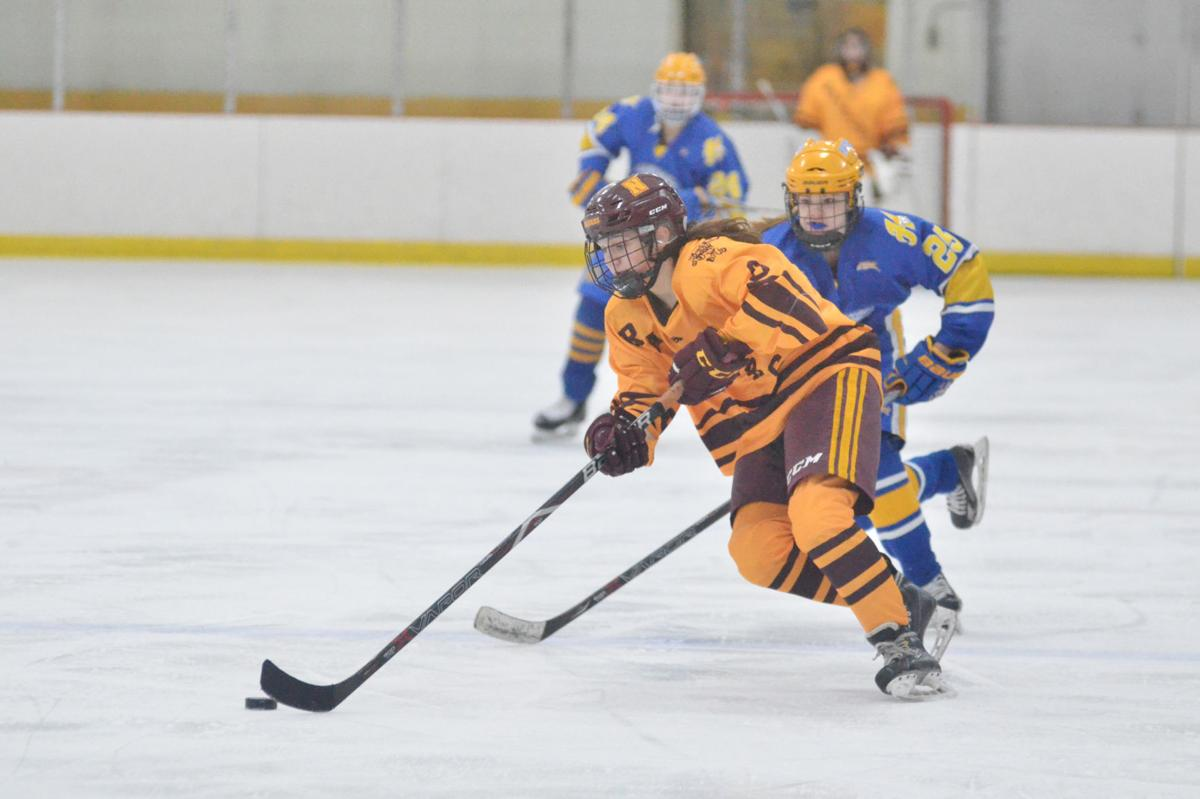 Malecha's shutout powers season-opening win for Northfield girls hockey