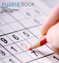 Valley Puzzle Book 2020