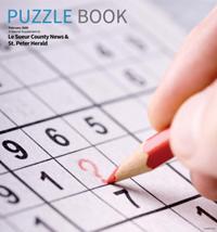 Valley Puzzle Book 2020