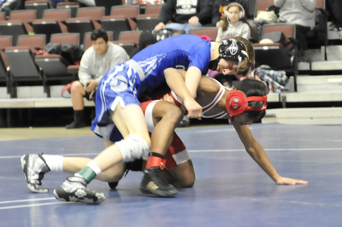 Wrestling: Owatonna sends 11 to Section 1AAA semifinals