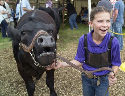 Le Sueur County Free Fair