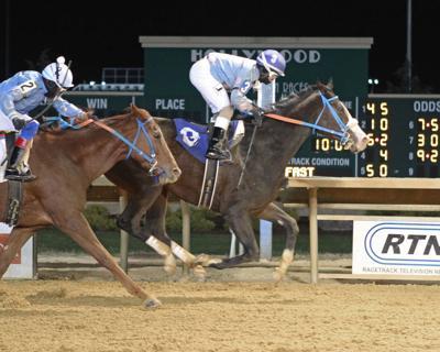 B'S WILD CORK - My Sister Pearl Stakes - 11-16-19 - R07 - CT -  Finish  .jpg