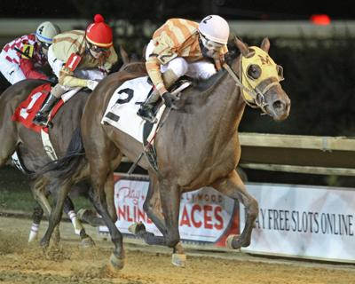 THELADYISTRUE - Rachel's Turn Stakes - 09-19-20 - R02 - CT - Finish  002  .jpg