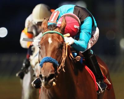 STOWE ANGEL - The Robert G Leavitt Stakes - 08-28-20 - R06 - CT -  Inside Finish.jpg