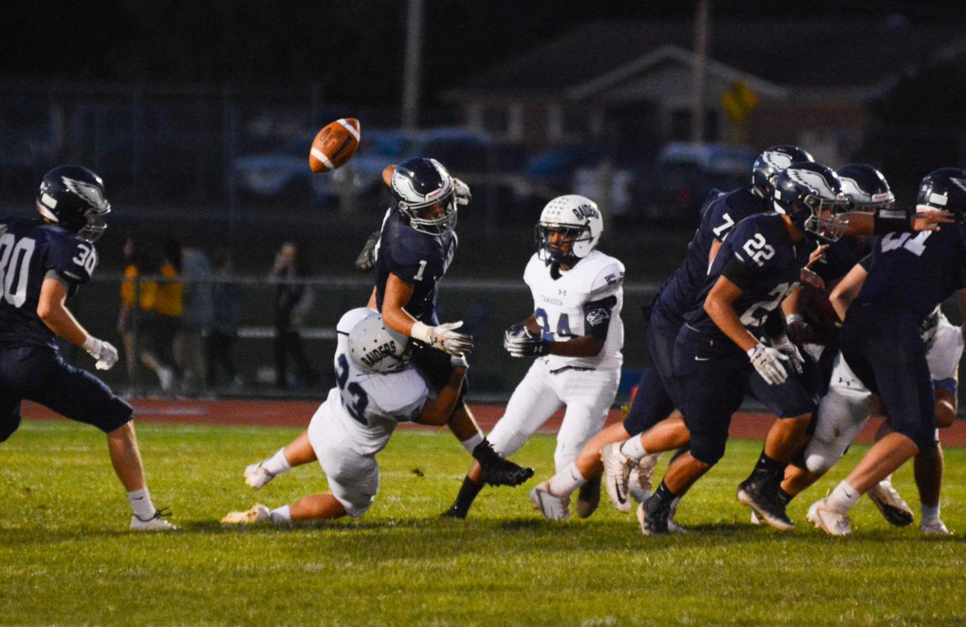 Tamaqua hopes playoff push helps in shortened season