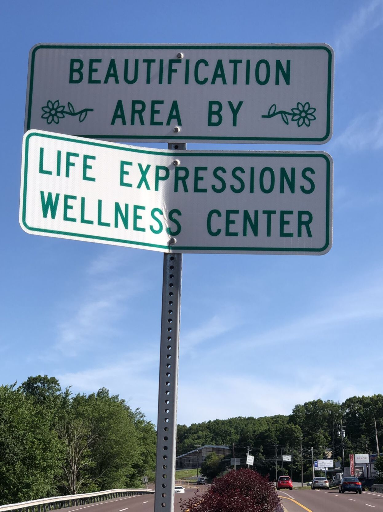 Sign says Life Expressions Wellness Center keeps highway beautiful