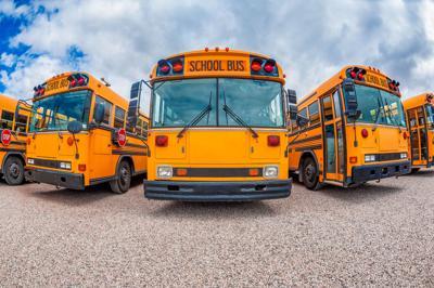 education school buses.jpg