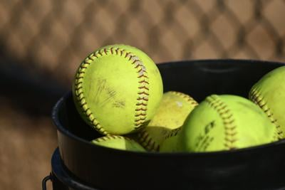 DISTRICT 11 SOFTBALL: North Schuylkill falls to Palmerton in 3A final