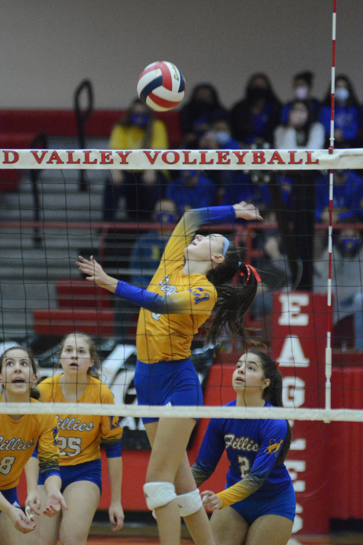 HS VOLLEYBALL: Fillies accept silver medals, look to future