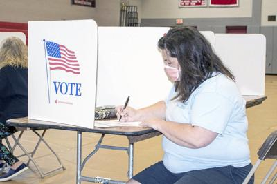 Number of voters reject mail-in ballot option