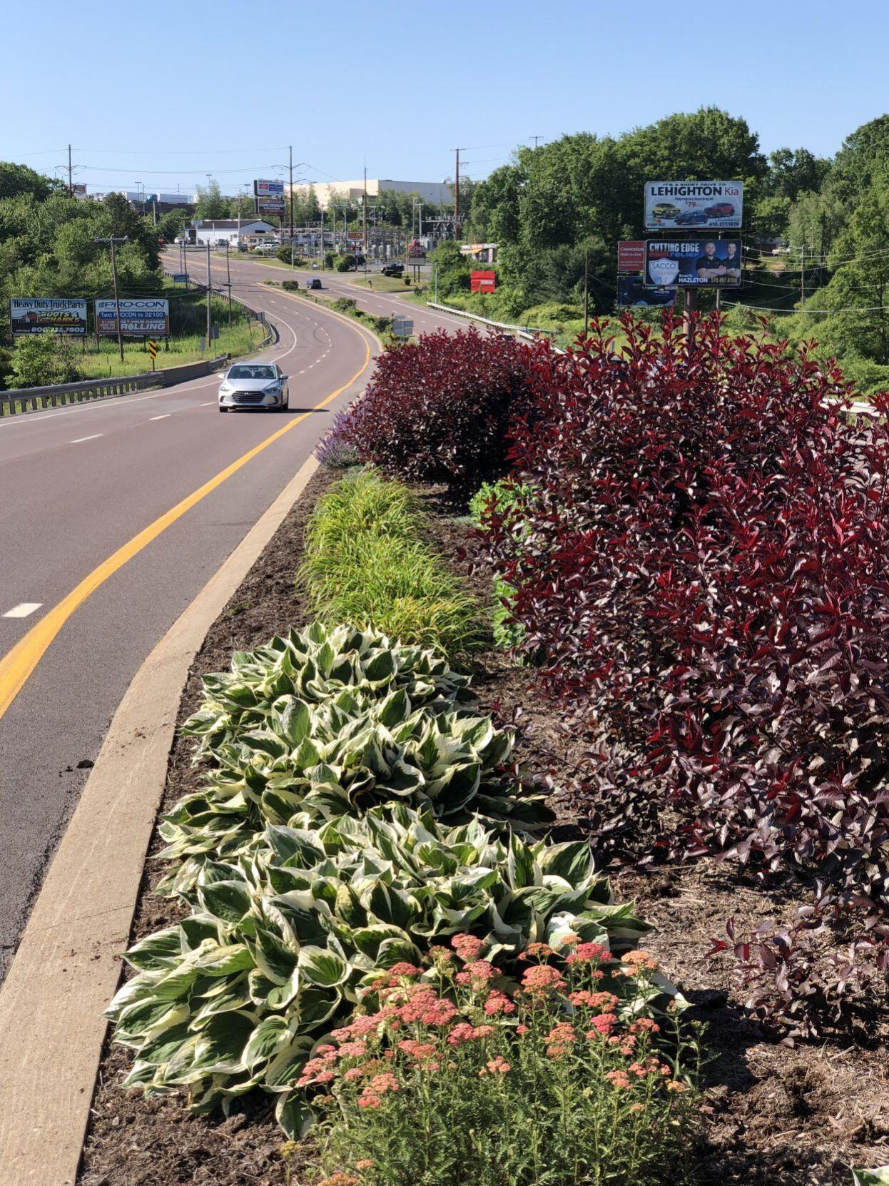 Car passes highway garden