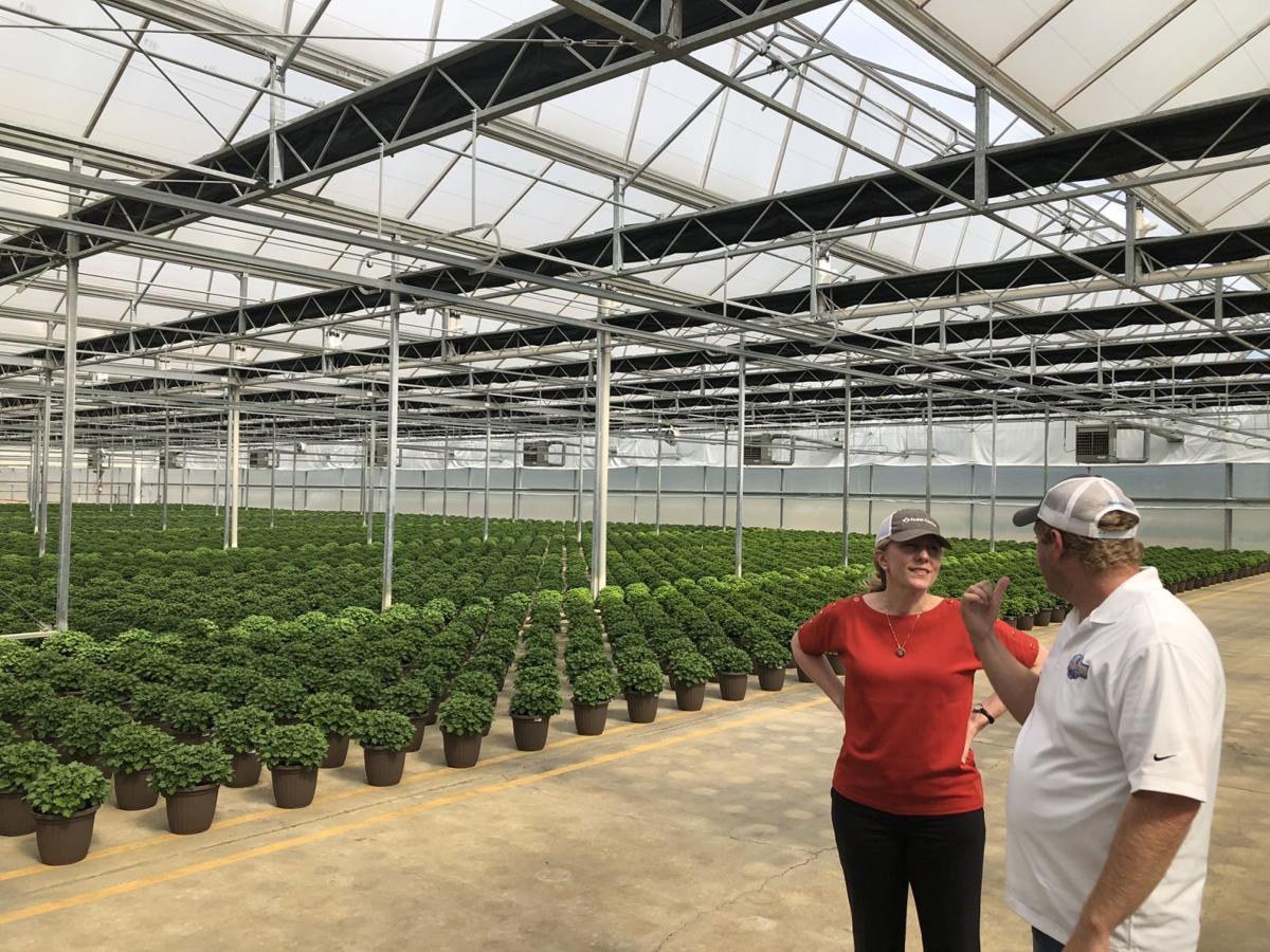 Spanberger visits Culpeper greenhouses