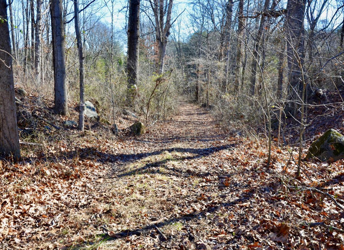 Lafayette's Route - toward Madden's Tavern