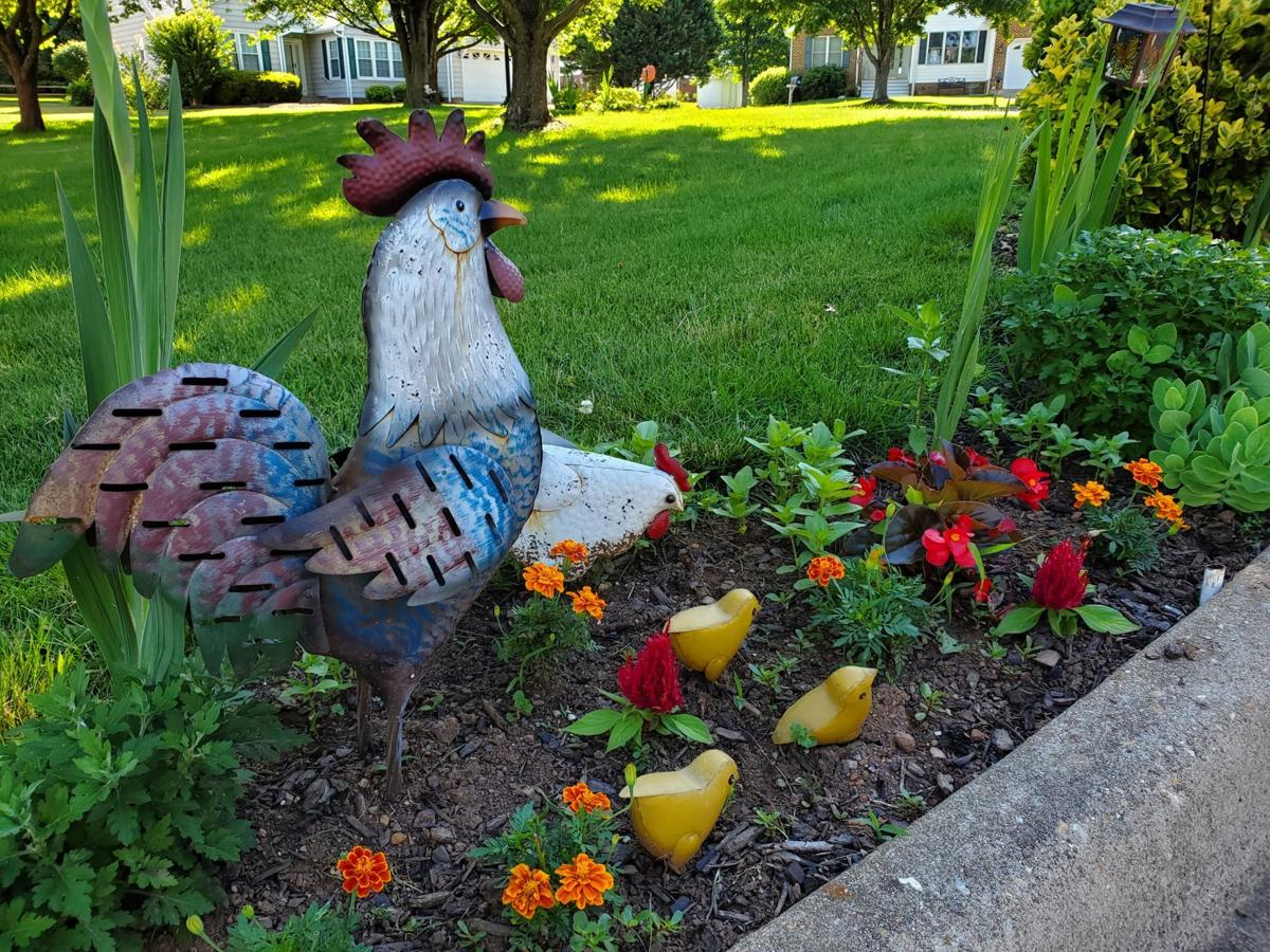 Yard accents chicken family Culpeper