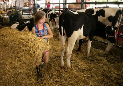Virginia State Fair (copy)