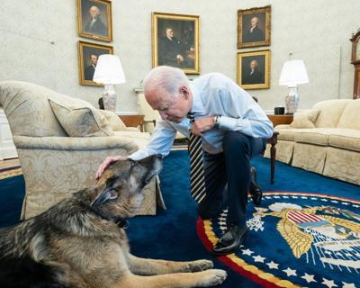 Biden and Champ