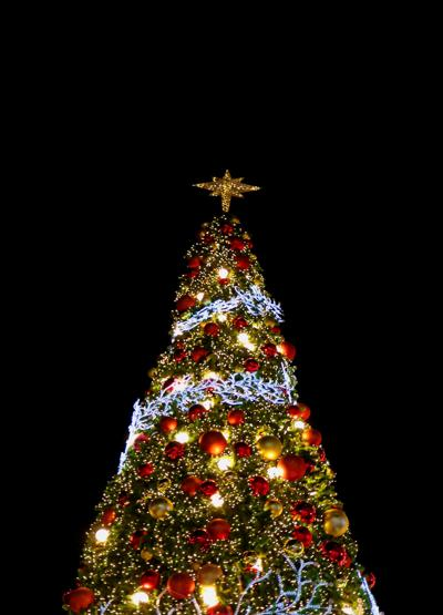 Christmas tree (copy) (copy)