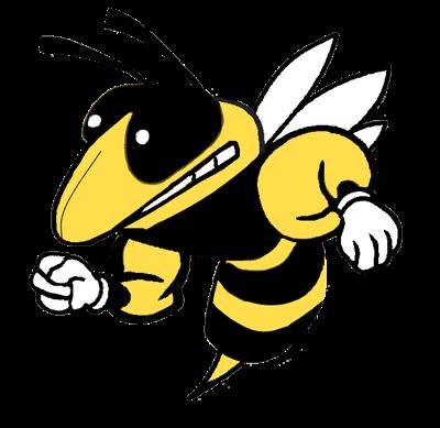 Greenville Hornets