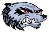 East Webster High School softball