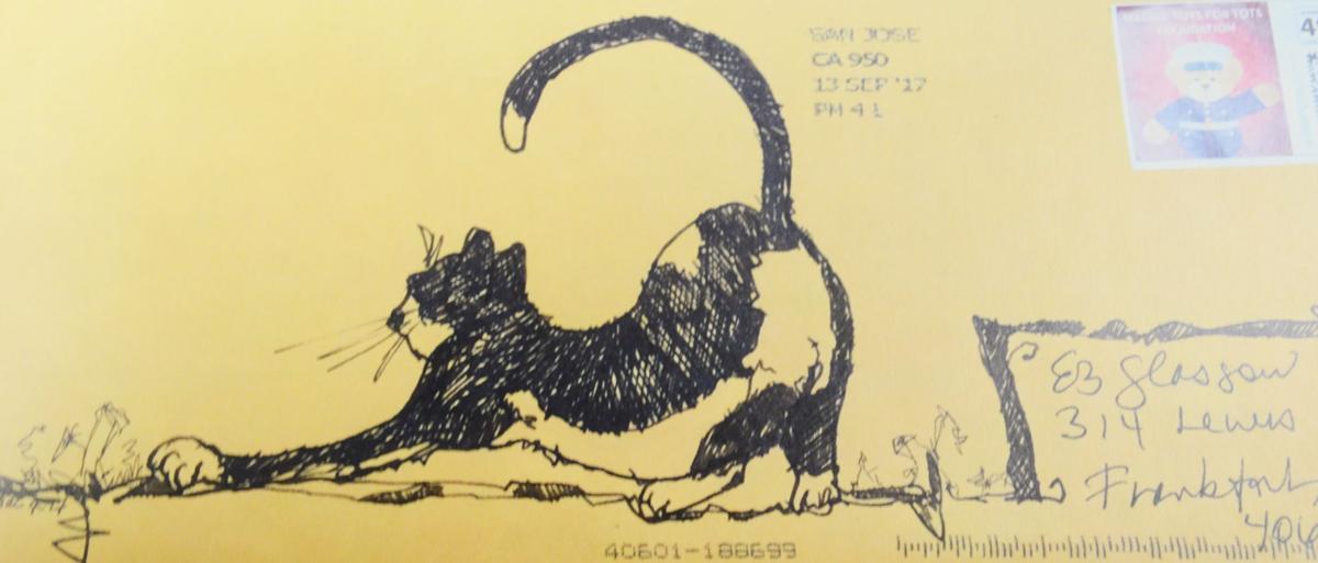 FOCUS: Cat stretch