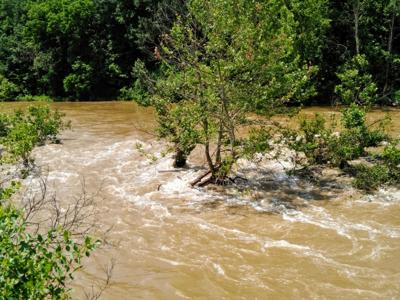 Elkhorn Creek
