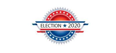 Election 2020 generic logo