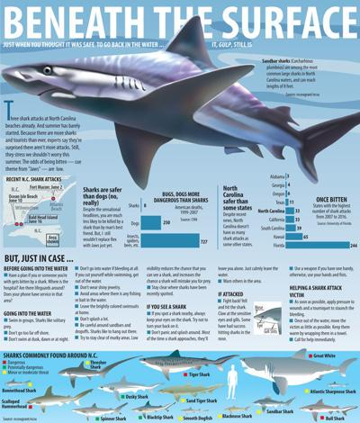 20190624g_nws_sharks_graphic