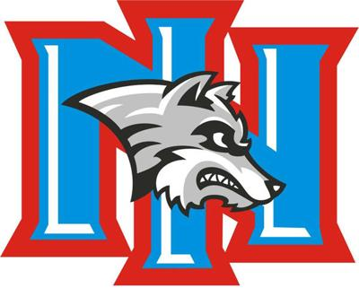 NIHS logo - new