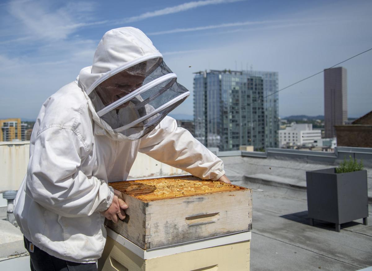 A sweet deal for hotels: Hosting honeybees