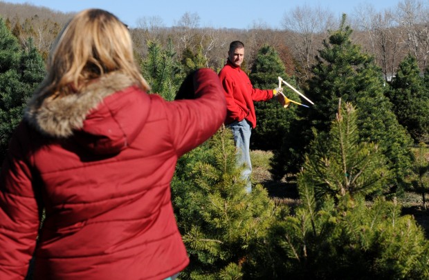 Christmas tree hunt - Meert Tree Farm Ready For Christmas Metro St. Louis News
