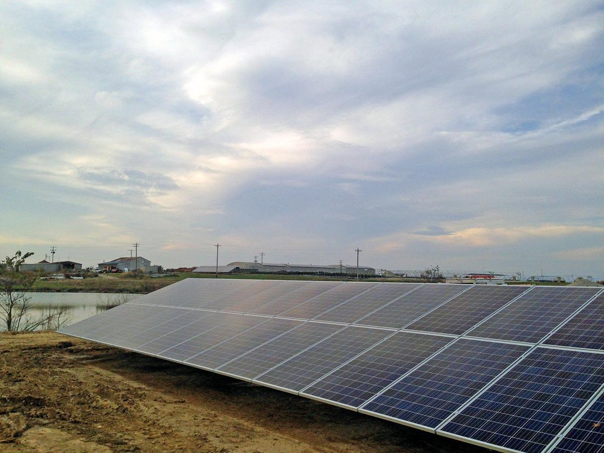 Solar Energy Companies Flocking To Metro East Illinois