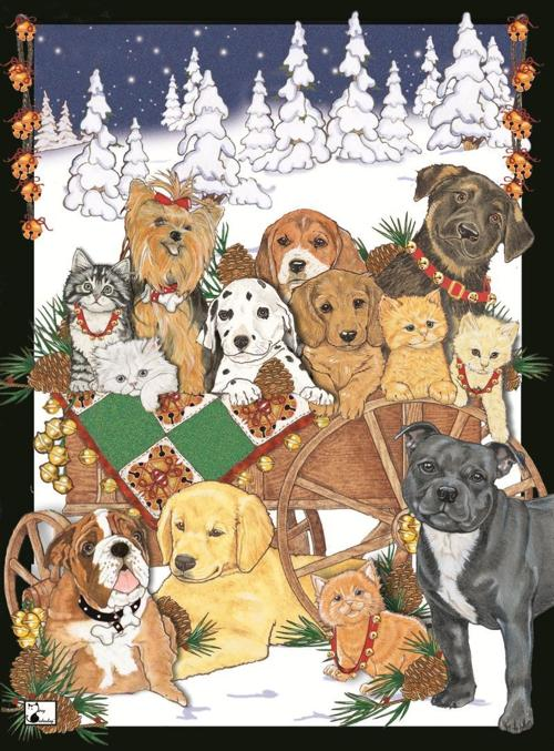 holiday card humane society of missouri - Humane Society Christmas Cards