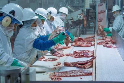 MEAT -- Triumph Foods pork processing facility