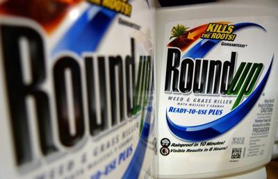 Earns Monsanto
