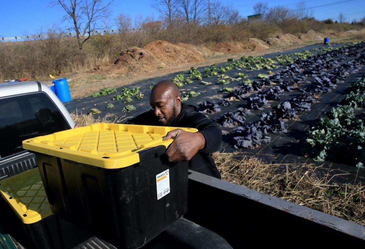 Tyrean Lewis, Heru Urban Farming