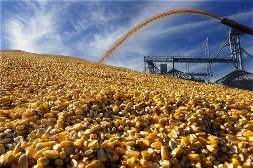 Illinois corn, soybean harvests at the halfway mark