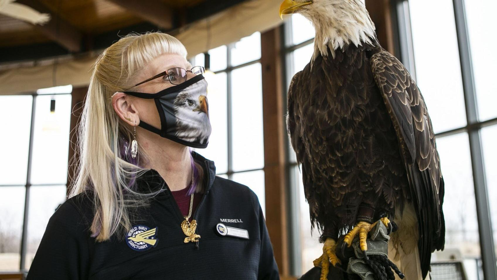 Photos: Annual Eagle Festival held virtually at Audubon Center at Riverlands