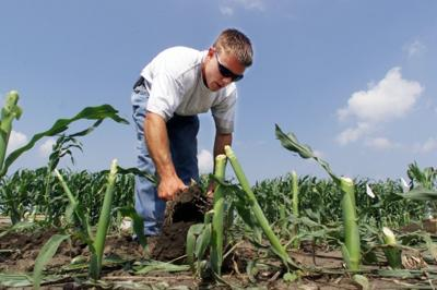 Monsanto spinoff will be final Aug. 13