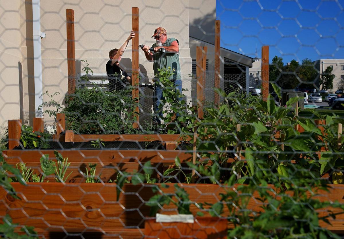 New garden serves homeless veterans at Jefferson Barracks | Metro ...